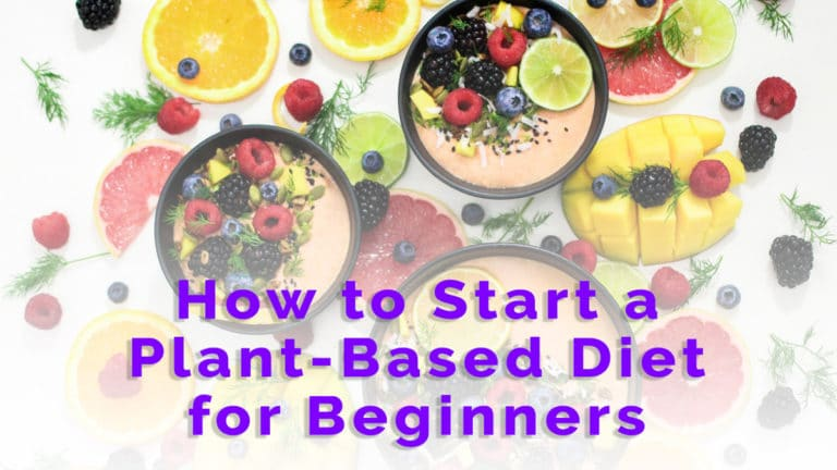how to start a plant-based diet for beginners