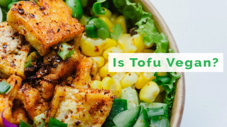 is tofu vegan?